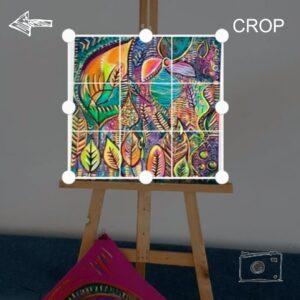 roomsetup-crop